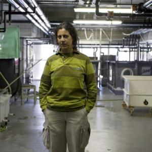 Elsa Santos, 32. Supervisora de Quarentena do Laboratório e responsável pelo laboratório. Gere a área de querentena e supervisiona os recurso humanos. Formada em Engenharia Zootécnica com mestrado em aquacultura